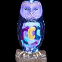 25_luna_the_night_owl